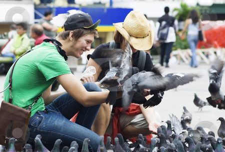 Feeding Pigeons in San Jose, Costa Rica stock photo, Tourists feeding pigeons in a plaza in San Jose, Costa Rica by Scott Griessel