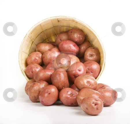 Red Potatoes stock photo, Red Potatoes pouring out of a Woven Basket by Scott Griessel