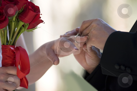 Wedding Ring stock photo, Groom placing a ring on a bride's finger by Scott Griessel