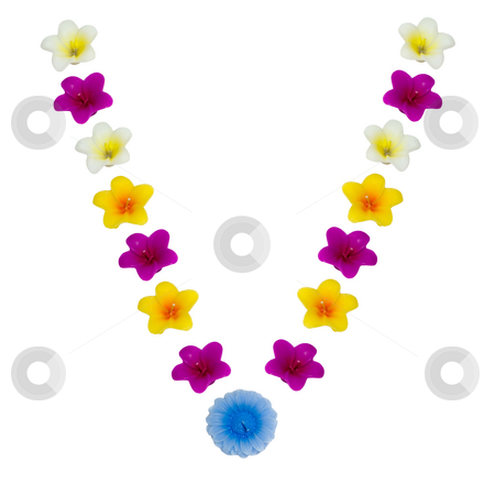 The Letter V stock photo, A letter of the alphabet made of wax flowered candles, isolated against a white background by Richard Nelson