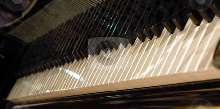Piano keyboard stock photo, The teeth of a piano keyboard. by Rob Wright