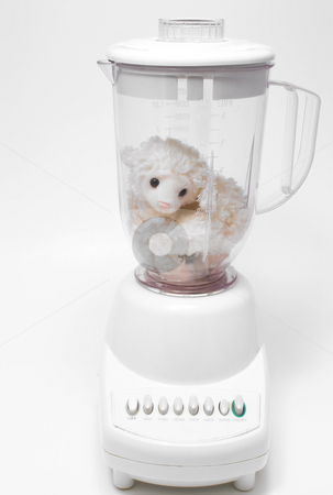 Lamb Chop stock photo, A stuffed animal in an electric kitchen blender. by Robert Byron