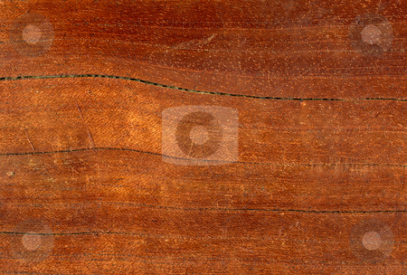 Macro close up detail of a polished wood surface. stock photo, Macro close up detail of a polished wood surface. by Stephen Rees