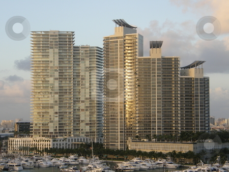 Skyscrapers in Miami stock photo, Skyscrapers in Miami, Florida (USA) by Ritu Jethani