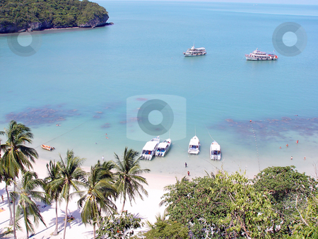 Exotic beach stock photo, Tropical beach and nature at samui island thailand asia by EVANGELOS THOMAIDIS