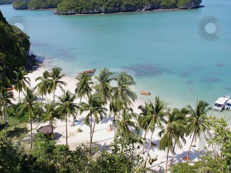 Tropical beach stock photo, Tropical beach and nature at samui island thailand asia by EVANGELOS THOMAIDIS