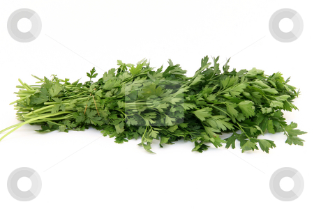 Parsley stock photo, Bouquet of fresh parsley isolated on white background by EVANGELOS THOMAIDIS