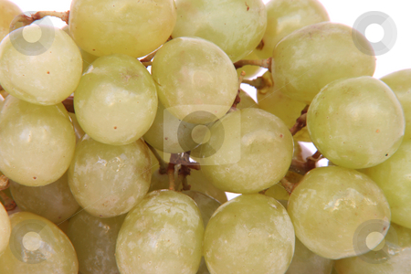 Texture of grapes stock photo, Closeup of grapes for texture and background use by EVANGELOS THOMAIDIS