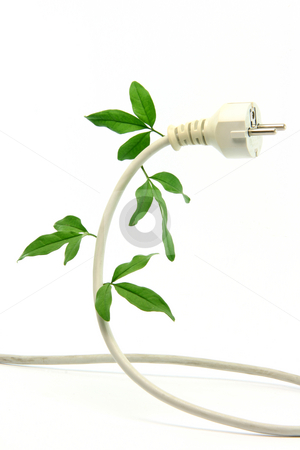 Ecological energy stock photo, Green energy ecological concepts power plug and cable with green leaves isolated by EVANGELOS THOMAIDIS
