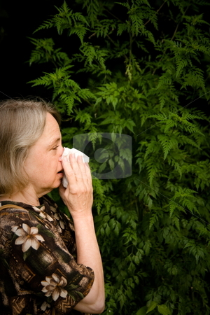 Hayfever stock photo, Women is suffering from hayfever with ragweed in the background by Jack Schiffer