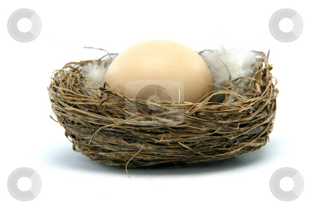 Brown egg in nest stock photo, Brown egg in a nest isolated on white background by EVANGELOS THOMAIDIS
