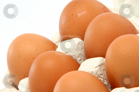Six eggs stock photo, Six eggs in cartonbox isolated on white background with copy space by EVANGELOS THOMAIDIS