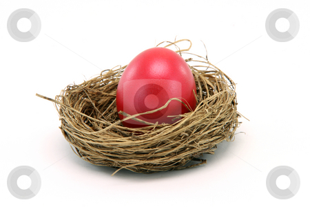 Easter egg in nest stock photo, Red easter egg in a nest isolated on white background seasonal by EVANGELOS THOMAIDIS