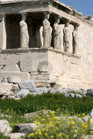 Spring flowers at erachtheum stock photo, Spring flowers at  temple of Erechtheum on acropolis of Athens Greece by EVANGELOS THOMAIDIS