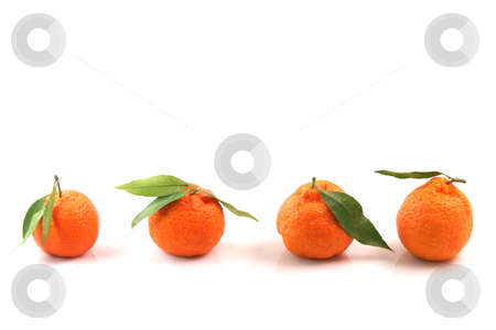 Copy space mandarins stock photo, Four mandarin front uper view with copy space isolated on white background fruits and agriculture concepts by EVANGELOS THOMAIDIS