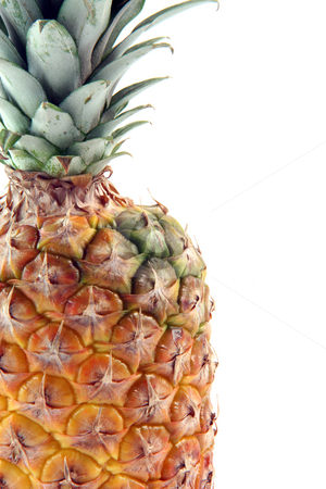 Detail ananas isolated stock photo, Detail of ananas with copy space isolated on white background fruits vegetables and agriculture concepts by EVANGELOS THOMAIDIS