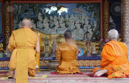 Three monks pray stock photo, Buddhist monks pray to buddha at big buddha temple samui island thailand by EVANGELOS THOMAIDIS