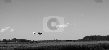 Plane Landing stock photo, A small remote controlled plane landing in a field by Richard Nelson