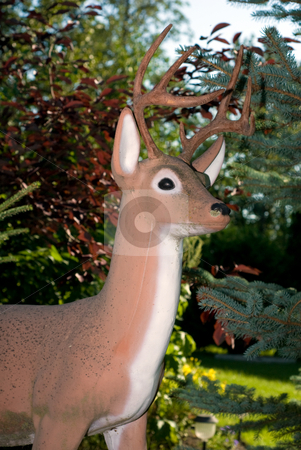 Deer Lawn Ornament stock photo, An artificial deer being used as a lawn ornament by Richard Nelson