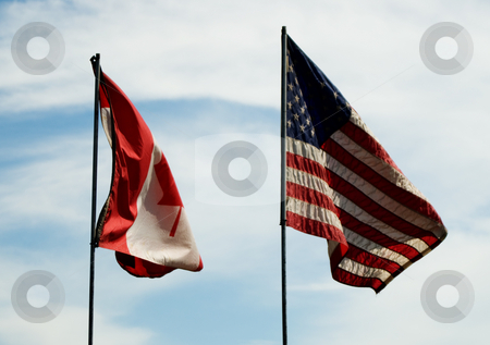 United Countries stock photo, A Canadian and an American flag blowing in the wind by Richard Nelson