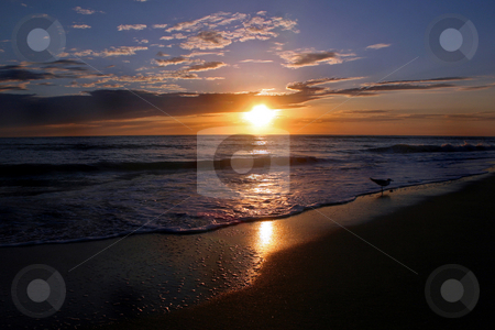Shining Sunset stock photo, An Amazing Sunset over the Gulf of Mexico. by Lucy Clark