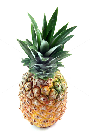 Leaves on pineapple stock photo, Pineapple and leaves  isolated on white background fruits vegetables and agriculture concepts by EVANGELOS THOMAIDIS