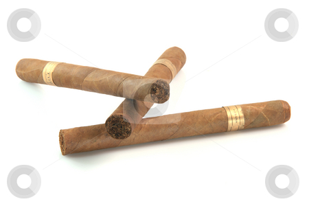Three big cigars stock photo, Three large cuban cigars isolated on white background luxury and abuse concepts by EVANGELOS THOMAIDIS