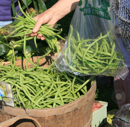 Picking fresh green beans stock photo, Hands choosing freshly harvested green beans from a basket at a farmers market by Tom and Beth Pulsipher
