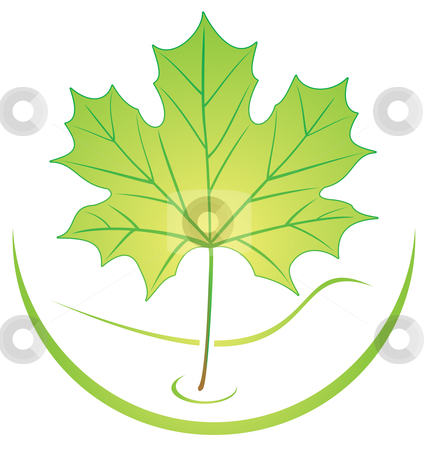 Leaf logo stock vector clipart, Ecological logo template with green leaf by oxygen64