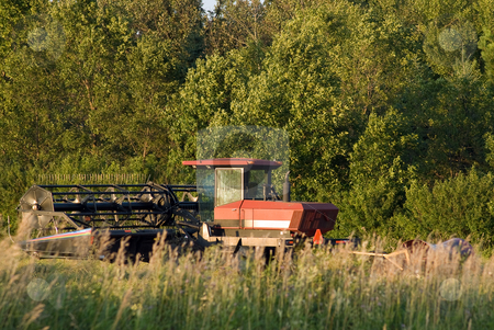 Combine stock photo, A red combine harvesting some wheat in a field by Richard Nelson