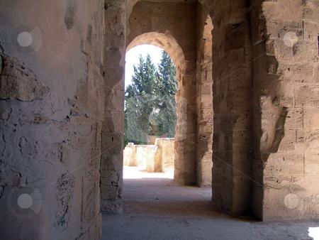 Roman colosseum of tunisia stock photo, Roman colosseum of tunisia and trees ancient landmarks of africa by EVANGELOS THOMAIDIS
