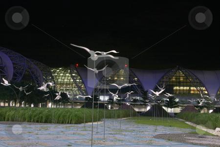 White birds stock photo, White birds night shut at bangkok new airport suvarnabhumi by EVANGELOS THOMAIDIS