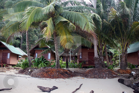 Bungalows on the beach stock photo, Bungalows on the beach tropical destinations koh chang island thailand by EVANGELOS THOMAIDIS