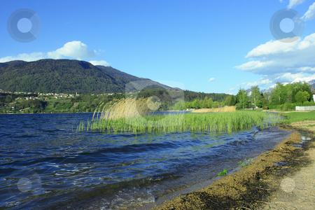 Caldonazzo lake stock photo, View of a shore of Caldonazzo lake in Trento, Italy by Natalia Macheda