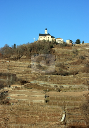 Church and vineyard stock photo, Church on a hill covered with vineyards in Segonzano, Italy. Winter period by Natalia Macheda