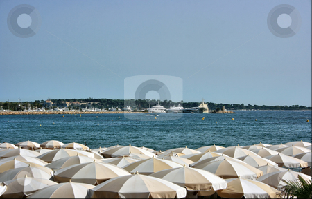 Dense beach umbrellas stock photo, Many umbrellas on a restaurant beach of Cannes with a wonderful view on luxury yachts by Natalia Macheda