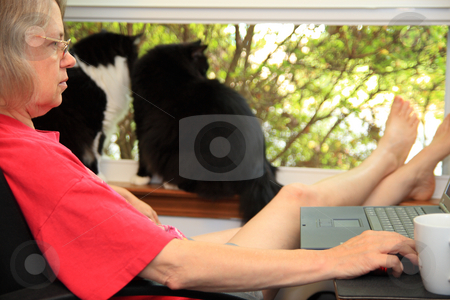 Telecommute stock photo, Middle aged woman working from home by Jack Schiffer