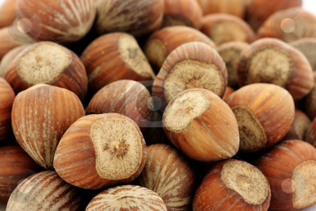 Hazelnuts stock photo, Close-up of hazelnuts. Shallow depth of field by Natalia Macheda