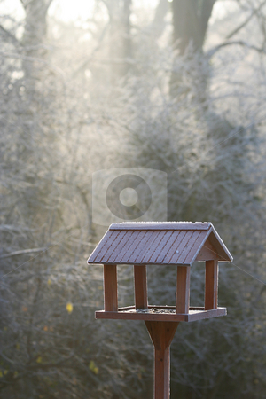 Frozen bird house stock photo, Frozen bird house in first winter morning light by Laurent Renault