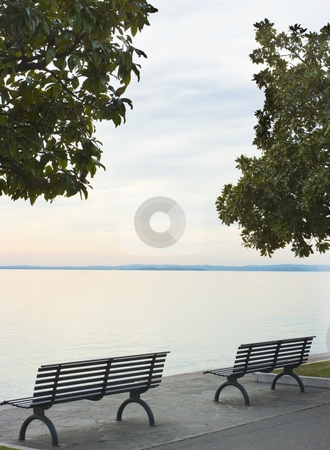 Looking on water stock photo, Pair of bences under magnolia trees against calm lake Garda in the cloudy evening by Natalia Macheda