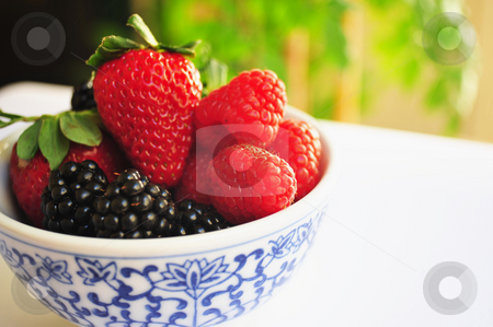Berries In A bowl stock photo, Blackberry, Raspberry and Strawberries in a small white and blue bowl. by Lynn Bendickson
