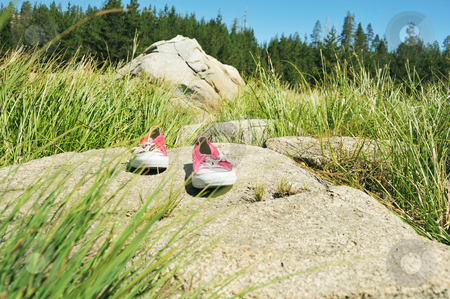 Lost In The Wilderness stock photo, A pair of red tennis shoes left behind in the forest. by Lynn Bendickson
