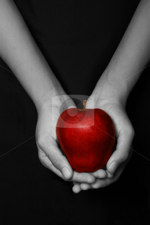 The original sin stock photo, Hands holding a red apple in black background by Jonas Marcos San Luis
