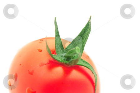Tomato stock photo, Cropped tomato close-up isolated over white by Natalia Macheda