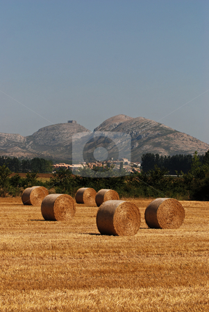 Rural landscape in Catalonia stock photo,  by Gady Cojocaru