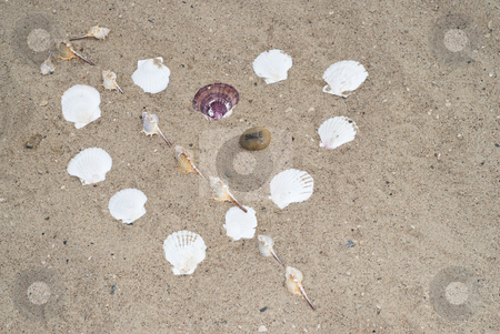 Seashell Heart stock photo, A heart shape made with seashells on the beach by Richard Nelson