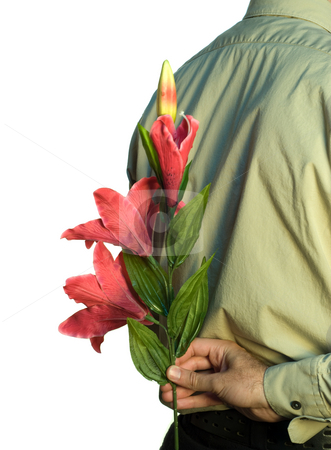 Hiding Flowers stock photo, A man holding a couple of lilies behind his back, isolated on a white background by Richard Nelson