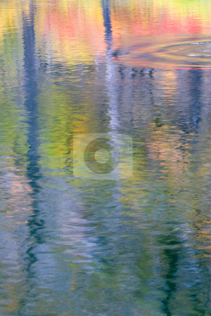 Ripples of Autumn stock photo, A autumn reflection along the waters of the Wenatchee River with the reflections broken up by the ripples of a spawning salmon breaking the surface. by Mike Dawson
