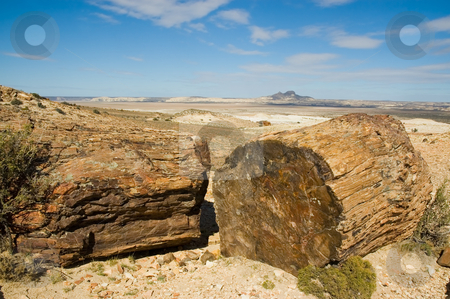 Petrified wood in Patagonia stock photo, Petrified wood in Patagonia, Southern Argentina. by Pablo Caridad