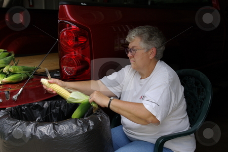 Woman cleans sweetcorn stock photo, An Iowa woman cleans (shucks) the leaves off an ear of fresh sweetcorn while sitting in her garage.  More ears of sweetcorn wait their turn on the tail end of her pickup. by Dennis Thomsen